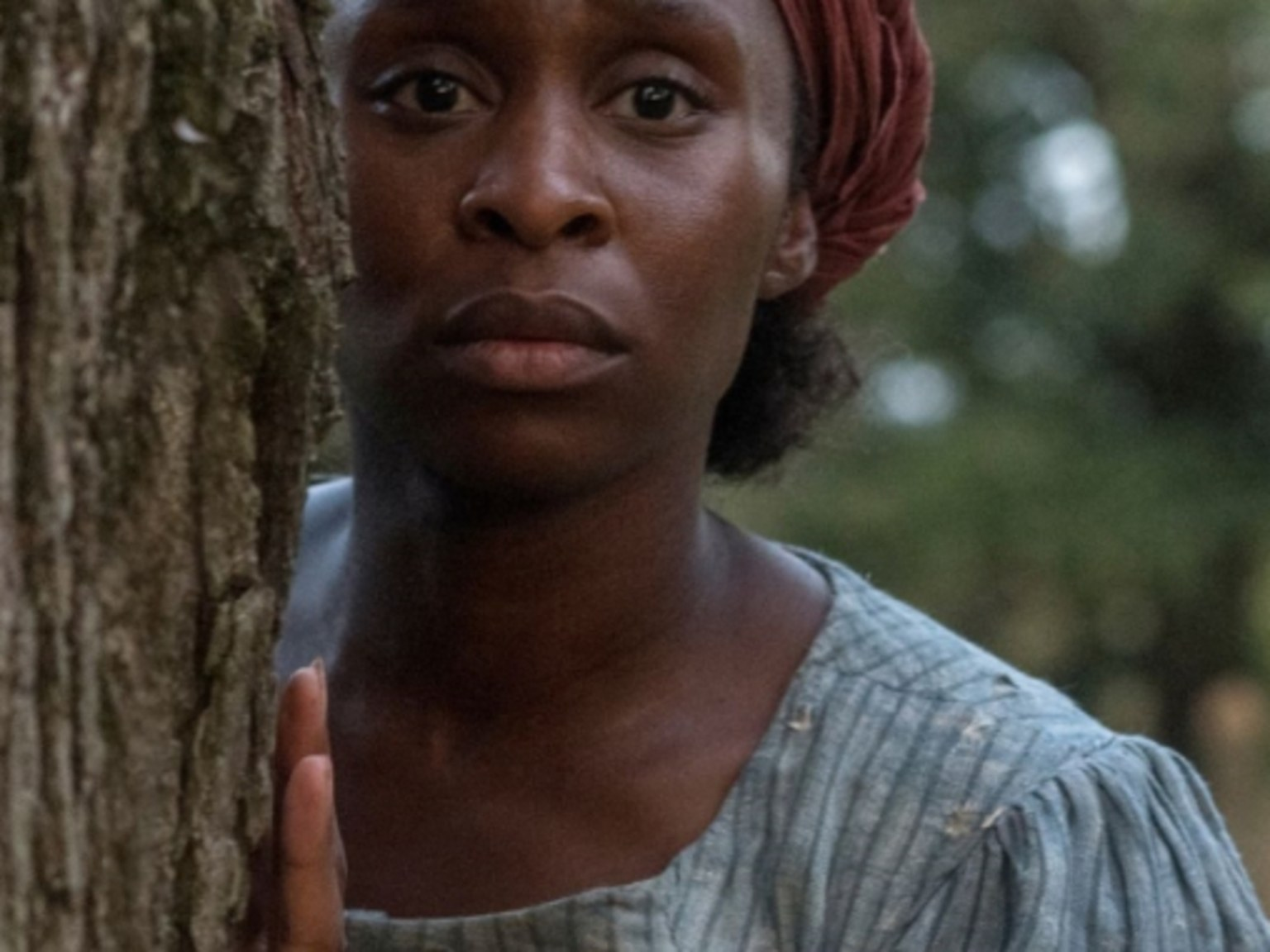 Cynthia Ervio as Harriet Tubman